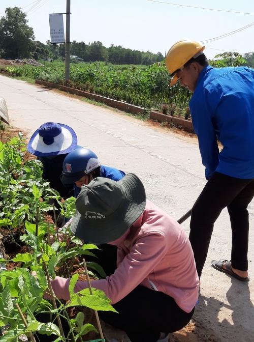 """Phú Thọ: Ra quân xây dựng """"Tuyến đường hoa"""" tại khu dân cư NTM kiểu mẫu"""