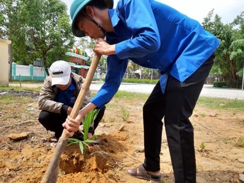 Quế Xuân 1: Ra quân trồng cây xanh năm 2019