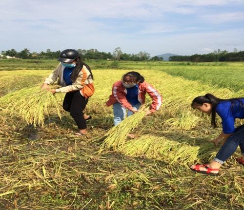 Tuổi trẻ Quế An và TT. Đông Phú ra quân giúp nhân dân  khắc phục hậu quả lốc xoáy